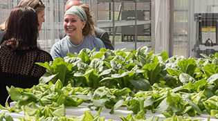 Mason's Hydroponic Greenhouse on campus at President's Park