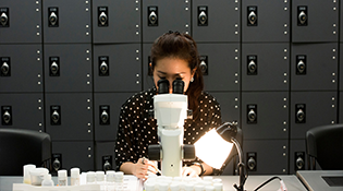 student uses microscope in lab