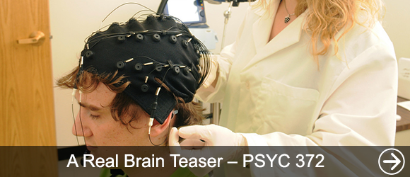 link to A Real Brain Teaser – PSYC 372 news article