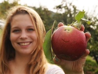 student applepicking